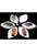www.snowfall-beads.nl - Mix kunststof hangers/bedels ovaal bewerkt met veertje ± 44x27mm