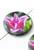 www.snowfall-beads.nl - Parelmoer kralen plat rond versierd met tulp ± 25mm (gat ± 1mm)