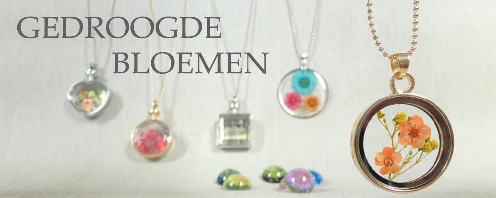 www.snowfall-beads.nl - Gedroogde bloemen