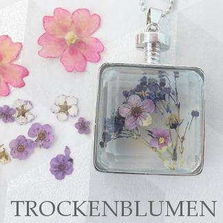 www.snowfall-fashion.de - Trockenblumen
